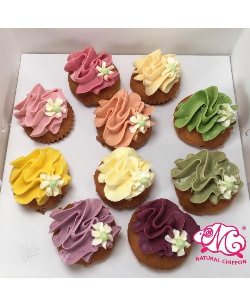 輕量裝彩虹mini cupcake