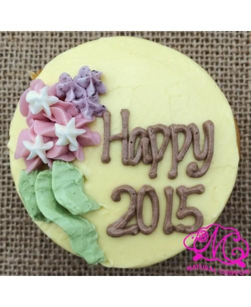 H2015 Cupcake